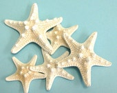 "Starfish -  Knobby Starfish Set of 10 - 2.5"" - 3"" Beach Decor Wedding Beach Parties Craft Shells Bulk Shells"
