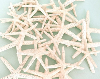 "White Starfish - 24 Mixed Size 2""-5"" - Natural White Finger Starfish - *Top Quality* craft shells beach weddings star fish"