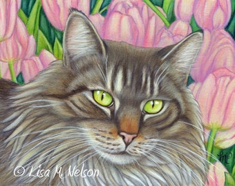 Maine Coon Cat and Tulips Giclee Print of my Original Colored Pencil Drawing