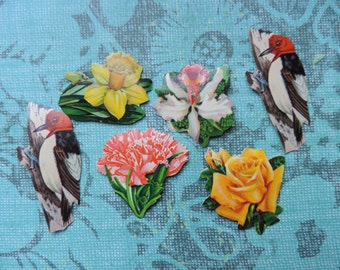 dennison nature seals vintage 50's flower and bird stickers