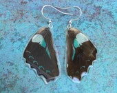 Butterfly Wing Earrings, Cruelty Free Real Wings, Minty Green Earthy Organic Jewelry, Natural, Bohemian Jewelry, Unique Gift, BW052