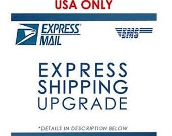EXPRESS Next Day~ flat rate envelope service for small jewelry In USA only