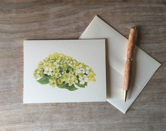 Green Hydrangea  Flower Note Cards - greetings, thank you, invitations.