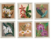 Vintage botanical Orchid flower rare artwork with Instant Download 6-[8x10]  Files  Botanical Print Antique Botanical Prints  Posters