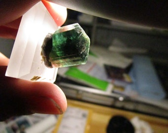 Bicolor Tourmaline from the Congo 1.5 centimeters