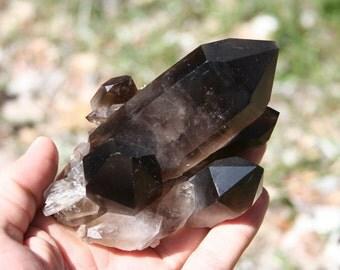 Smokey Quartz Crystal Cluster High Quality Specimen