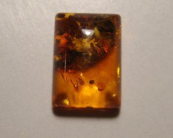 Natural Baltic Amber cab   ...................      14 x 10 x 5 mm  .........      B3179
