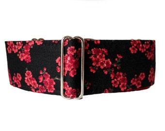 Cherry Blossom Martingale Collar, 2 inch Martingale Collar, Red, Black, Cherry Blossom Dog Collar, Custom Dog Collars, Wide Dog Collar