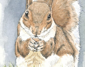 Original ACEO Squirrel ACEO Art Card Watercolor ACEO Squirrel Painting Collectible Art Miniature Art Unframed Art Animal Art