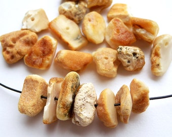 20pcs - Natural Baltic amber beads, raw, untreated beads, honey, yellow, white amber,  9-12 mm at widest part (#22)