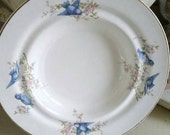 Vintage Bluebird plate saucer collectible wall collage