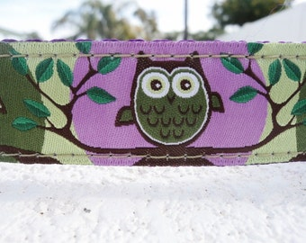 "Sale Dog Collar 3/4"" or 1"" wide Quick Release buckle Owl Green adjustable - No martingale, limited ribbon"