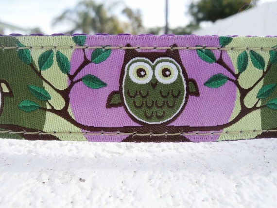 """Sale Dog Collar 3/4"""" or 1"""" wide Quick Release buckle Owl Green adjustable - No martingale, limited ribbon"""