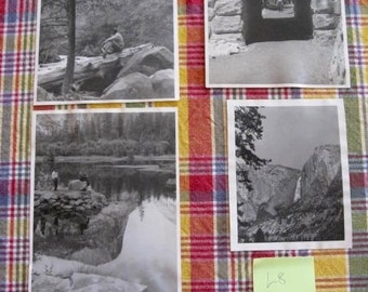 4 Yosemite National Park Original Photo Vintage Photographs Bears Waterfalls Tunnel 1940's   Lot 8
