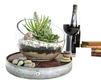 Hyperbola - Wine Barrel Head and Glass Terrarium