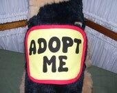 Extra Small Dog Adopt Me Vest