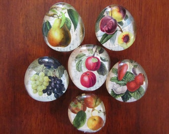 ViNTAGE ViCTORIAN FRUIT GLASS BUBBLE Magnets Strong Botanical Refrigerator Magnets Set of 6