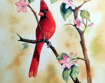 Red Cardinal and Blossoms