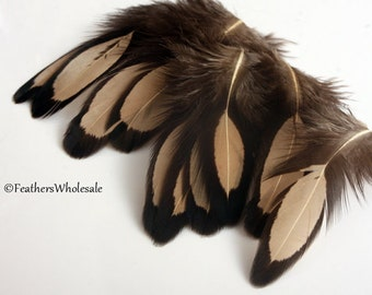 Teddy Bear Brown Craft Feathers Laced Hen Feather Natural Color Craft Supplies Dyed Light Brown Tan Feathers Black Hen Feathers 10 PCS