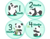 Monthly Baby Stickers, First Year Photo Props, Baby Month Stickers, Baby Announcement, Monthly Photos, Baby Gift, Pandas (N060)