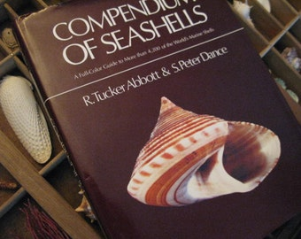 Fabulous First Edition COMPENDIUM of SEASHELLS Abbott & Dance Most Complete IDENTIFICATION Book Marine Shells Glorious Details Table Display