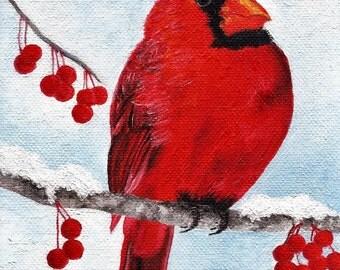 wintery cardinal