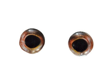 Small Glass Eyes - 8mm - Glass Eyes - Fish