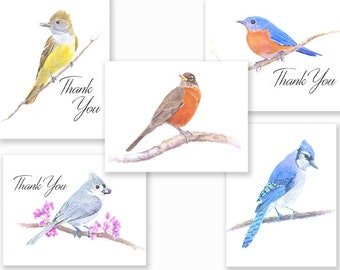 Bright Colorful Bird Note Cards, w/envelopes.
