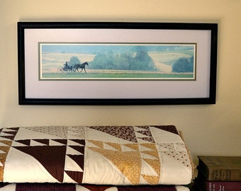 Amish Buggy in the Country, Framed Rectangular Picture/Wall Hanging