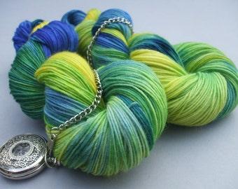 Squishy Sock & Shawl Yarn. Blue Tit