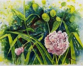 Peonies and Money Plants, original watercolor, botanical painting, floral, pink, green, flower painting, original painting, Michigan artist