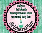 SALE Baby Monthly Sticker Month Sticker Bodysuit Sticker Milestone Set to Match any Monthly Set in My Store Newborn, 1 Week, 2 Weeks and 3 W