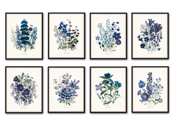 Fleurs de Jardin Print Set No.8, Botanical Print, Giclee, Art Print, Antique Botanical Prints, Vintage Botanical, Wildflower Print, Collage