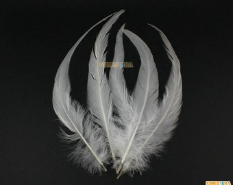 5 Pieces White  Feather 22-30cm (YM22)