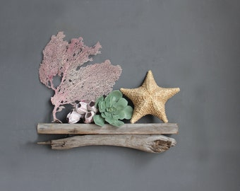 Driftwood Shelf / SMALL Size