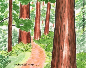 220. redwood forest card - choose any 6 designs