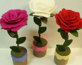 Felt Roses in mini pots, Set of (3)