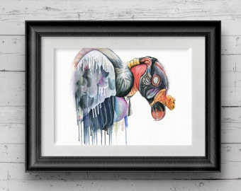 vulture limited edition giclee print fine art print bird print bird design illustration watercolour painting