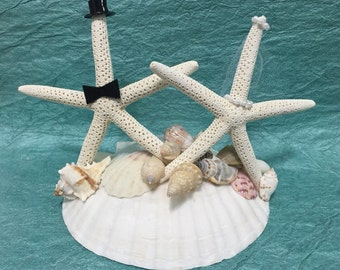 Bride and Groom Cake Topper White Pencil Real Starfish on a Giant Real Scallop - Customize your Wedding!