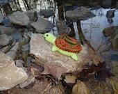 Topsy Turvy Turtle