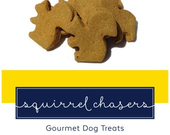 Homemade Gourmet Dog Treats - Pumpkin Flavored Dog Biscuits Shaped  Like Squirrels - 8 oz Bag