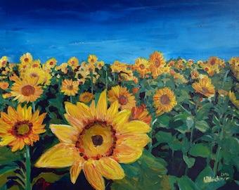 Beautiful Morning At Sunflower Fields