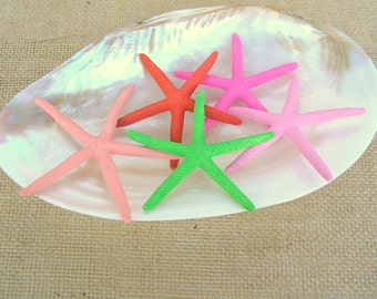 Painted Starfish, Colored Starfish  (ANY color) 40 pcs. 3 - 4 inch Finger Starfish, Beach Decor, Wedding Supplies