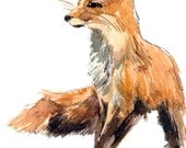 ACEO Limited Edition 2/25 -Red fox, Animal miniature painting, Art card of an original ACEO watercolor, Gift for animal lovers