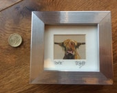 Mini Moo Bertie The Highland Cow - Minature Framed Artist's Print available in white, black, silver or wood frame.
