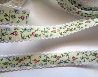 Emily Ribbon Trim with Edge, Multi, 3/4 inch wide, 1 yard, For Home Decor, Scrapbook, Mixed Media, Accessories, Gifts