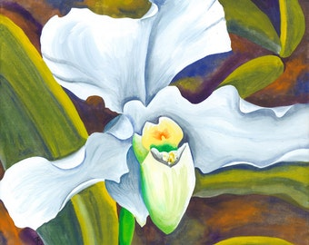 White Flower Limited Edition Print