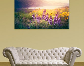 Wildflower Sunrise - Canvas Gallery Wrap -Purple and Yellow Flowers Basking in the Morning Sun -Columbia River Gorge of Pacific Northwest