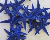 Blue Dyed Mini Starfish (10 pc) - Colored Mini Starfish - Colorful Dark Blue Starfish - Seashell Supply - Craft Seashells, Beach Wedding