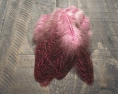 12 Dyed Pink Hen Feathers ~ Cruelty Free **Use Coupon Code FEATHERS20 and save 20% on all Feathers**